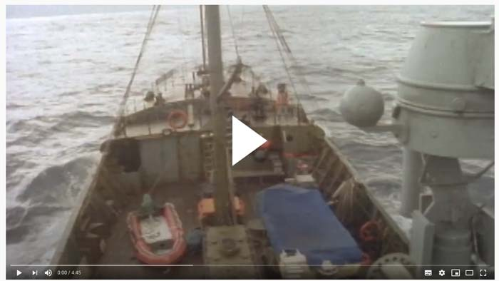 Video Sea Shepherd